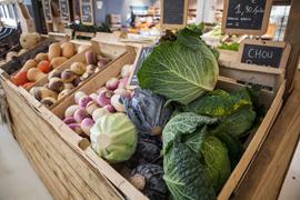 Légumes de saison au Verger de Kerbellec à Brech, agriculture raisonnée pommes, poires, épicerie, boucherie-charcuterie, vente directe, circuit-court